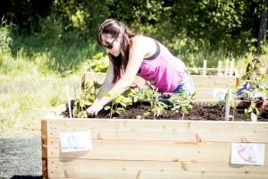 garden (13)